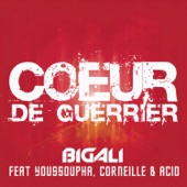 Cœur de guerrier (feat. Corneille, Youssoupha & Acid) - Single