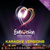 Eurovision Song Contest - Düsseldorf 2011 (Karaoke Versions) - Verschillende artiesten