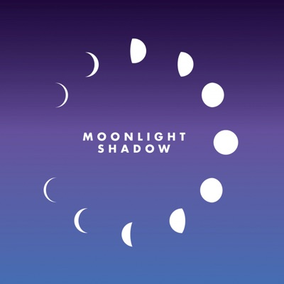 Moonlight Shadow - Single - Maggie Reilly
