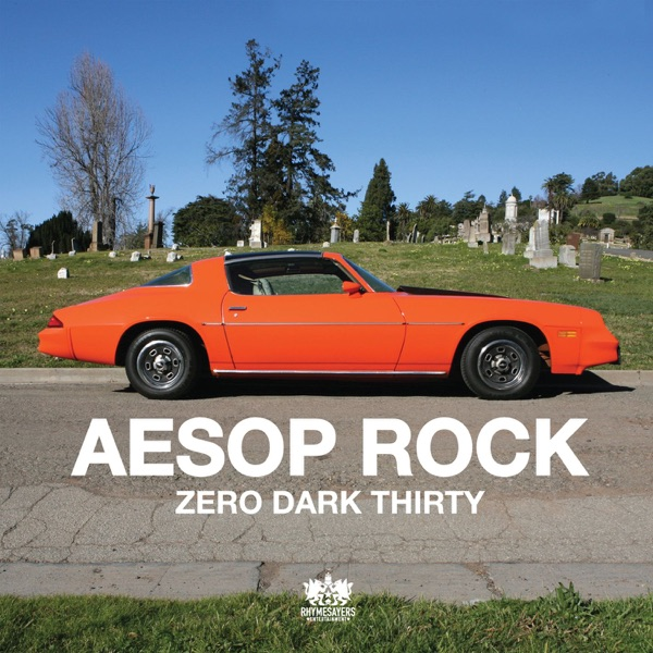Zero Dark Thirty - Single