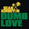 Dumb Love Single