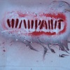 Shadows - Single, Warpaint