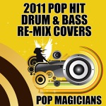 2011 Pop Hit Drum & Bass Re-Mix Covers