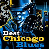 Best Chicago Blues