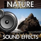 Finnolia Sound Effects - Ocean Waves (10 Minute Recording) [Sound Effect]