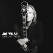 Joe Walsh - Analog Man