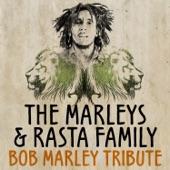 The Marleys & Rasta Family - Nice Time