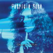 Aprender a Volar - Patricia Sosa
