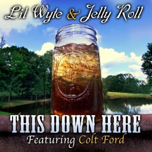 Lil Wyte & Jelly Roll - This Down Here feat. Colt Ford