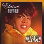Elaine Norwood - If I Ain't Got You, Jesus