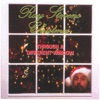 Ray Stevens Christmas Through a Different Window, Ray Stevens