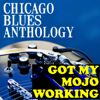 Chicago Blues Anthology Got My Mojo Working - Various Artists