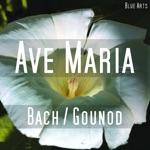 Raphaela Gromes, cello - Ave Maria ( Bach , Gounod )