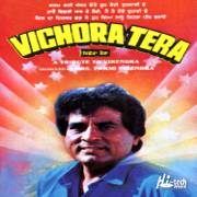 Vichora Tera - Various Artists - Various Artists