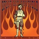 Split Lip Rayfield - In the Ground