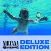 Nirvana - In Bloom