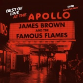James Brown & The Famous Flames - There Was A Time