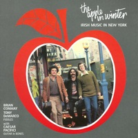 The Apple In Winter - Irish Music In New York by Brian Conway & Tony DeMarco on Apple Music
