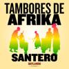 Santero - Tambores de Afrika (feat. Sonido Baylando & Boogat) artwork