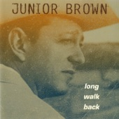Junior Brown - The Better Half