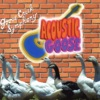 Goose Creek Symphony - That's the World We're Livin' In Today