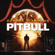 Pitbull Feel This Moment (feat. Christina Aguilera) - Pitbull
