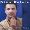Nicu Paleru - Singur din nou artwork