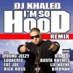 songs like I'm So Hood (feat. Young Jeezy, Ludacris, Busta Rhymes, Big Boi, Lil Wayne, Fat Joe, Birdman & Rick Ross) [Remix]