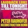 Till Tonight (Peter Rauhofer Remix) [feat. Jonathan Mendelsohn] Single ジャケット写真
