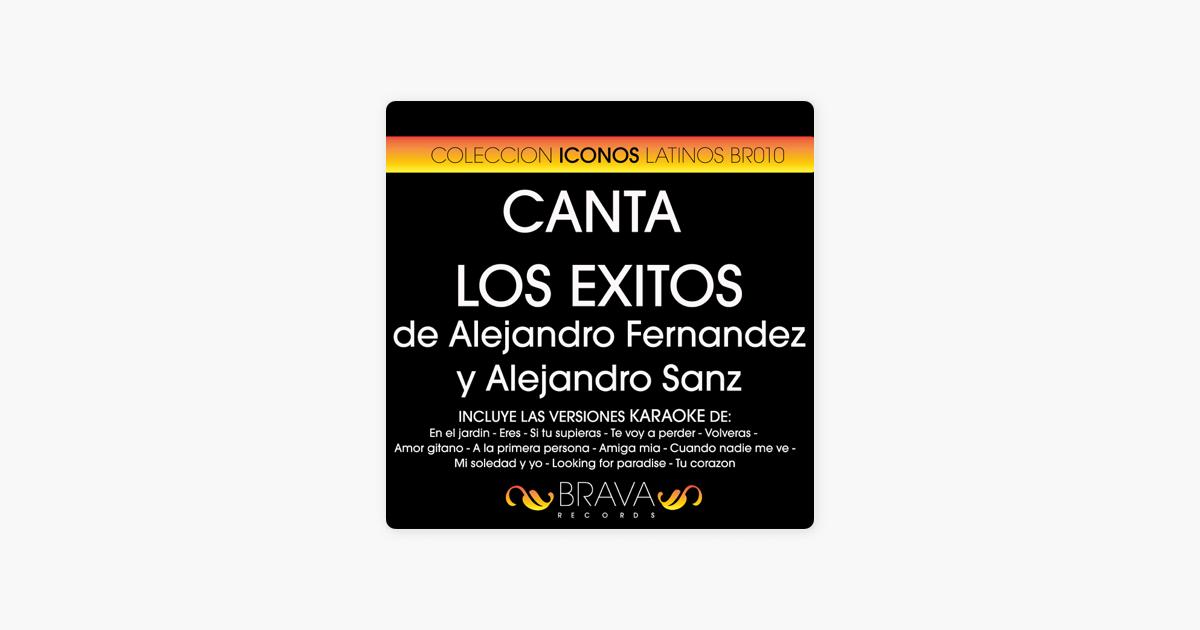 Canta Los Exitos de Alejandro Fernández y Alejandro Sanz by Brava ...