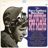 The Barry Goldberg Blues Band - Mean Old World
