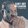 Sonny Boy Williamson - Keep It to Yourself artwork