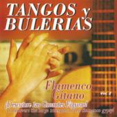 Flamenco Gitano - Tangos y Bulerías Vol. 2