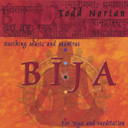 Bija: Soothing Music and Mantras - Todd Norian - Todd Norian