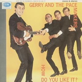 How Do You Like It? (Mono & Stereo Versions) by Gerry & The
