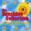 The Sunshine Collection - 18 Songs for a Sunny Day (Rerecorded Version)
