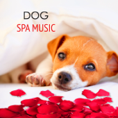 Dog Spa Music - Calming Relaxing Healing Music 4 your Dog Day Spa in Pet Salon
