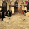 Vivaldi: Cello Sonatas, Andrea Marcon & Anner Bylsma
