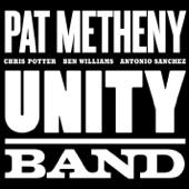 Pat Metheny - New Year