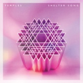 Temples - Shelter Song (Leftside Wobble rocks the Discoteque Remix)