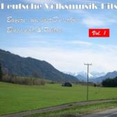 Deutsche Volksmusik Hits - Bayern, wie bist du schön: Blasmusik & Polkas, Vol. 1