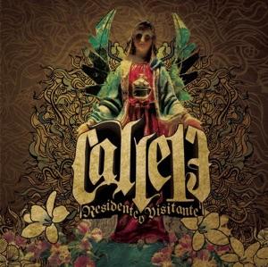 Calle 13 - Pal Norte