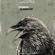 El Cuervo - EvilMrSod