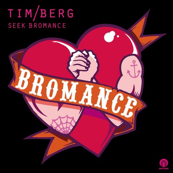 Seek Bromance - EP Tim Berg CD cover
