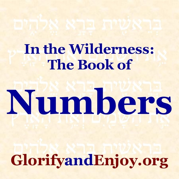 In the Widerness (The Book of Numbers) - Greg Cook