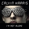 I'm Not Alone (Tiesto Remix)