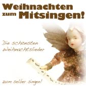 Weihnachten zum Mitsingen - Die schönsten Weihnachtslieder zum selber singen (Instrumental Version)