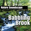 Babbling Brook Nature Sounds Only
