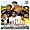 The Biggest Desi Bhangra Hits, Vol. 3