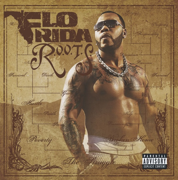 Flo Rida -  song lyrics